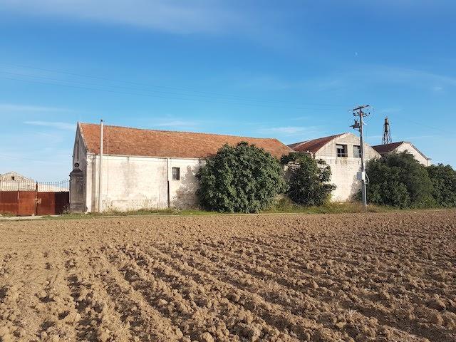 ancona-immobiliare_1051_1509722512.jpg