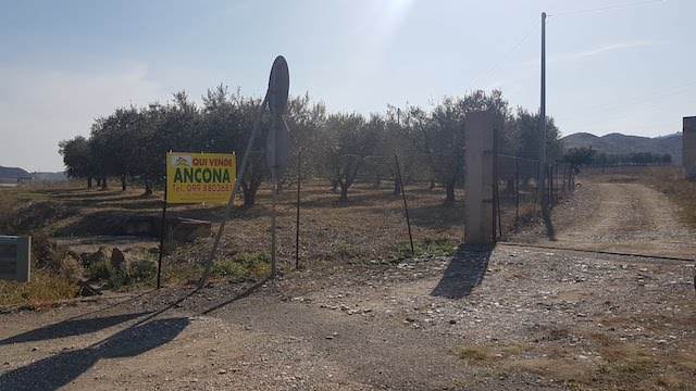 ancona-immobiliare_1298_0_1572251333.jpg