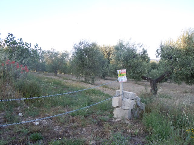 ancona-immobiliare_521_1337105133.jpg