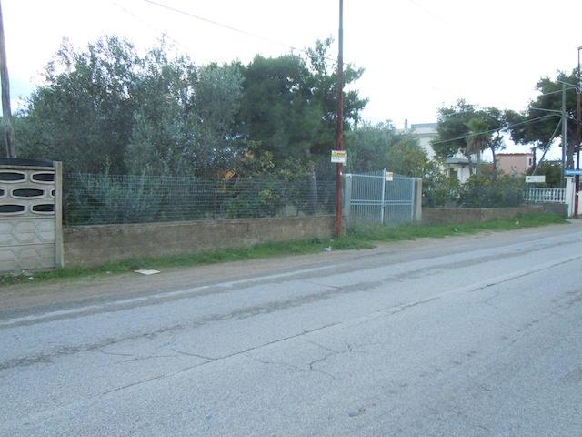 ancona-immobiliare_687_1384966031.jpg