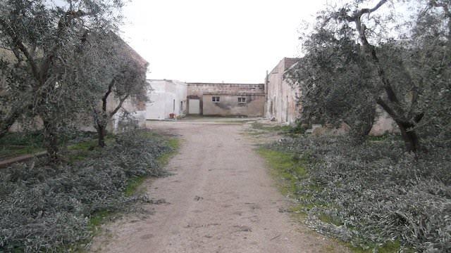 ancona-immobiliare_701_1395246092.jpg