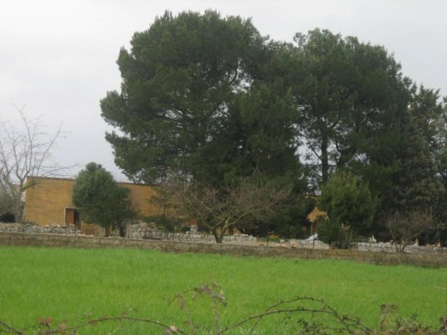 ancona_immobiliare_189_0.jpg